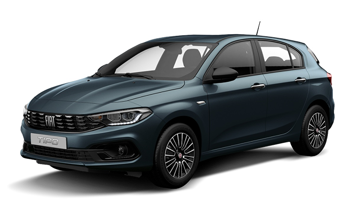 download Fiat Tipo able workshop manual